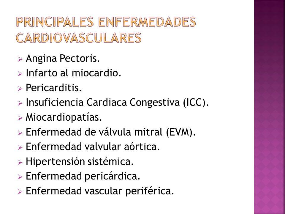 PRINCIPALES ENFERMEDADES CARDIOVASCULARES