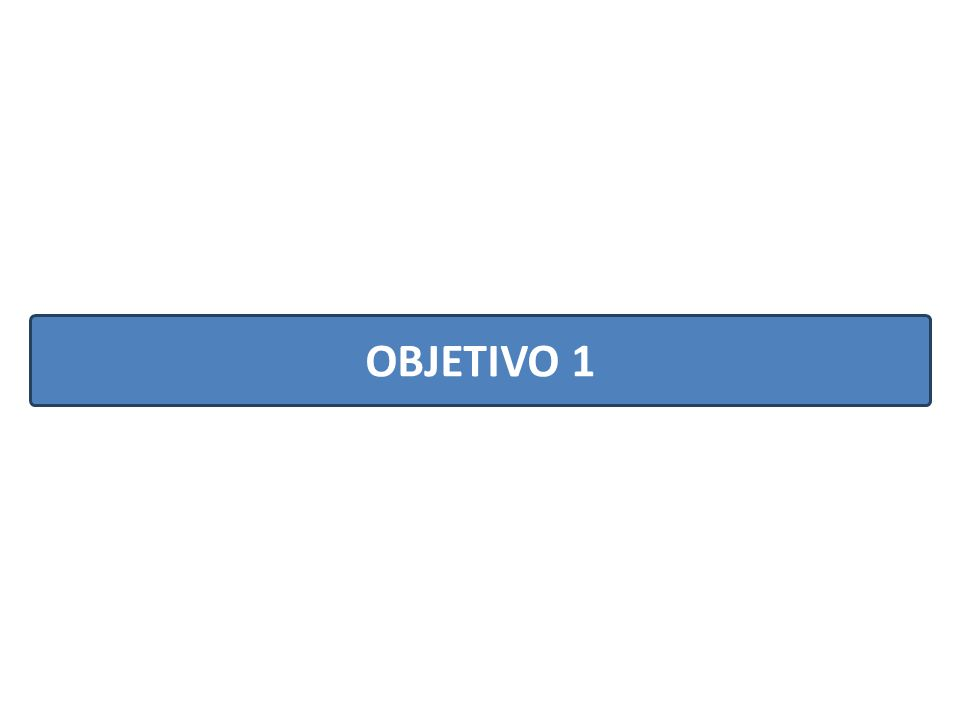 OBJETIVO 1