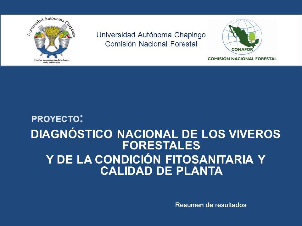 Universidad aut noma chapingo comisi n nacional forestal for Proyecto productivo de vivero forestal