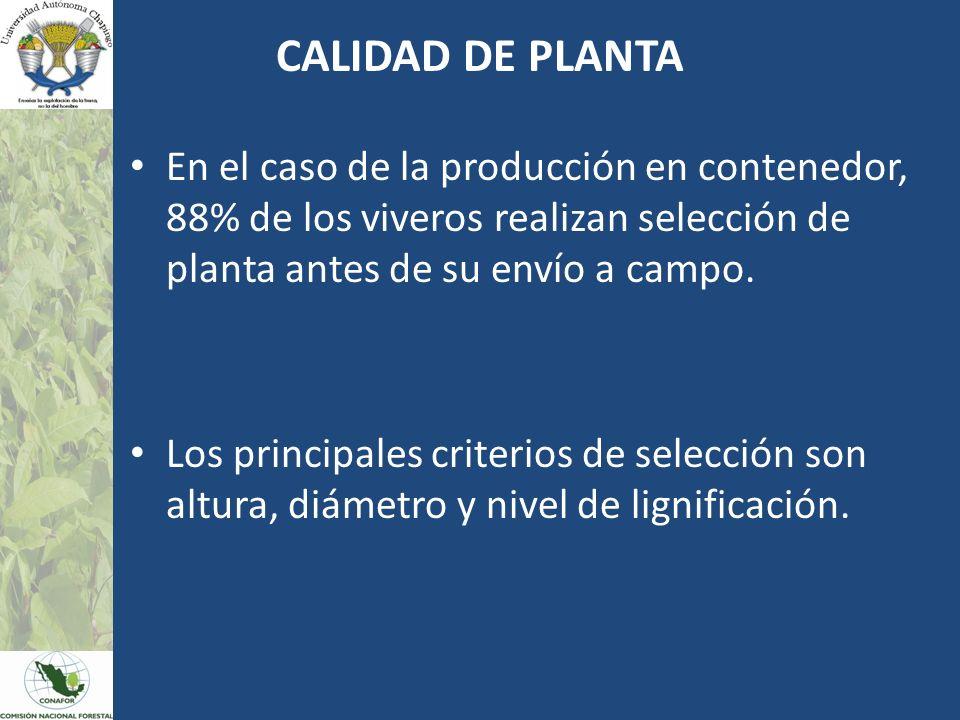 CALIDAD DE PLANTA En el caso de la producción en contenedor, 88% de los viveros realizan selección de planta antes de su envío a campo.