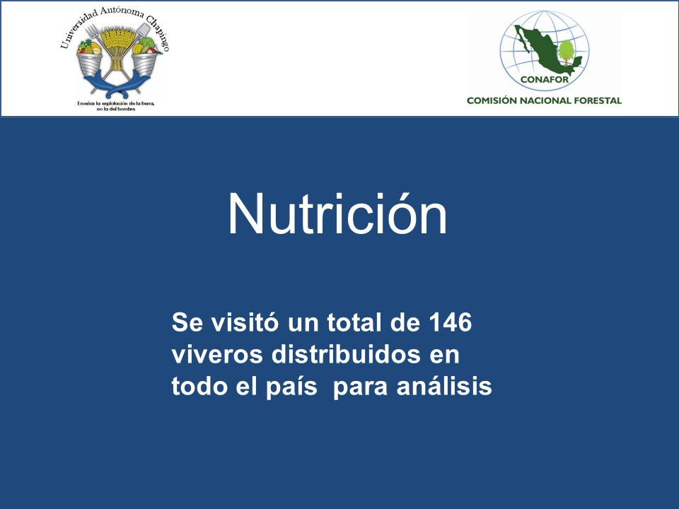Universidad aut noma chapingo comisi n nacional forestal for Todo para viveros