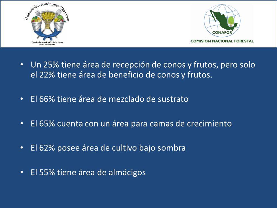 Un 25% tiene área de recepción de conos y frutos, pero solo el 22% tiene área de beneficio de conos y frutos.