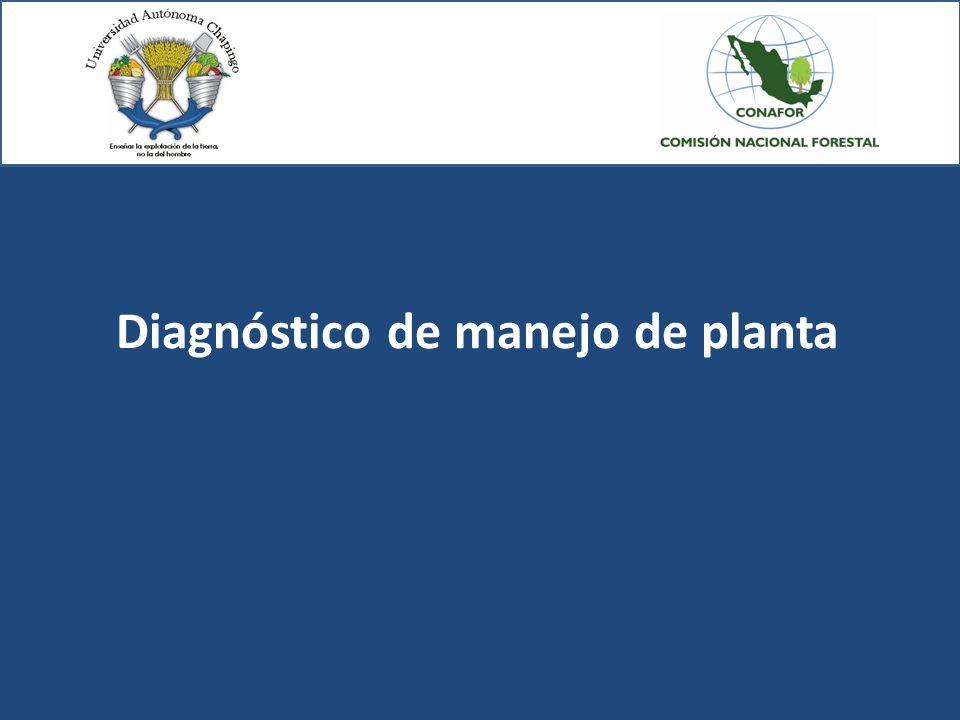Diagnóstico de manejo de planta