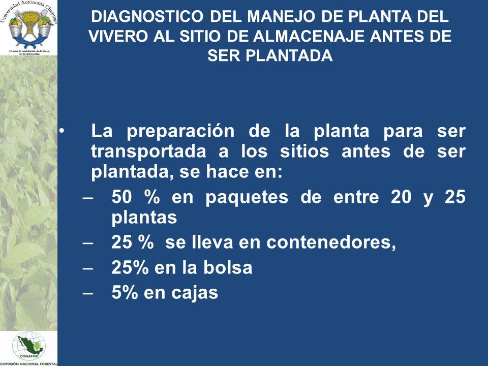 50 % en paquetes de entre 20 y 25 plantas