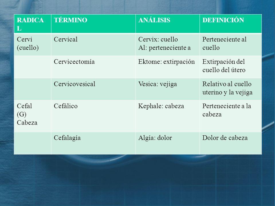 RADICAL TÉRMINO. ANÁLISIS. DEFINICIÓN. Cervi (cuello) Cervical. Cervix: cuello. Al: perteneciente a.