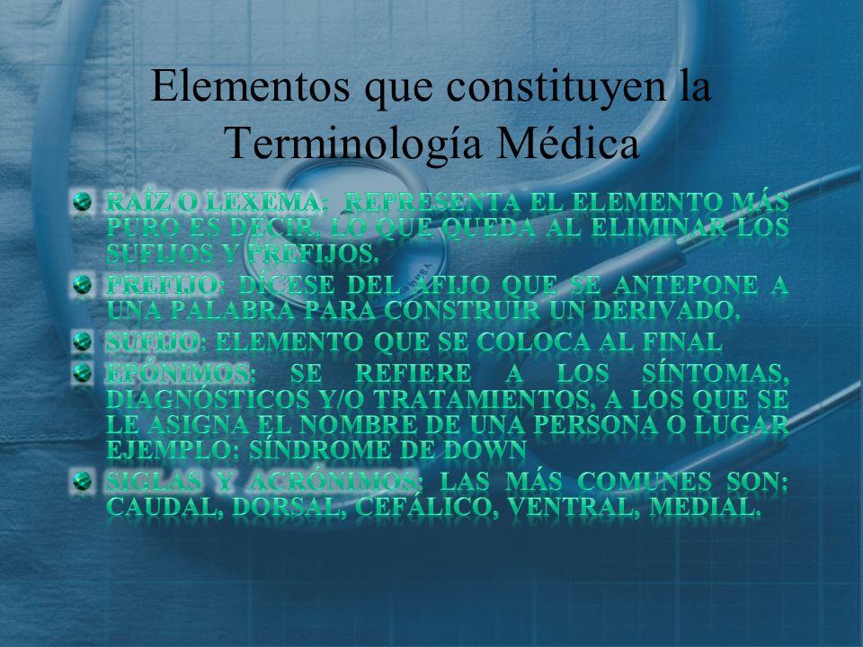 Elementos que constituyen la Terminología Médica