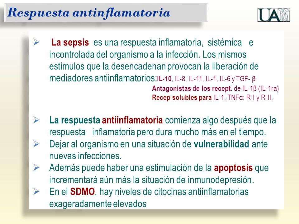 Respuesta antinflamatoria