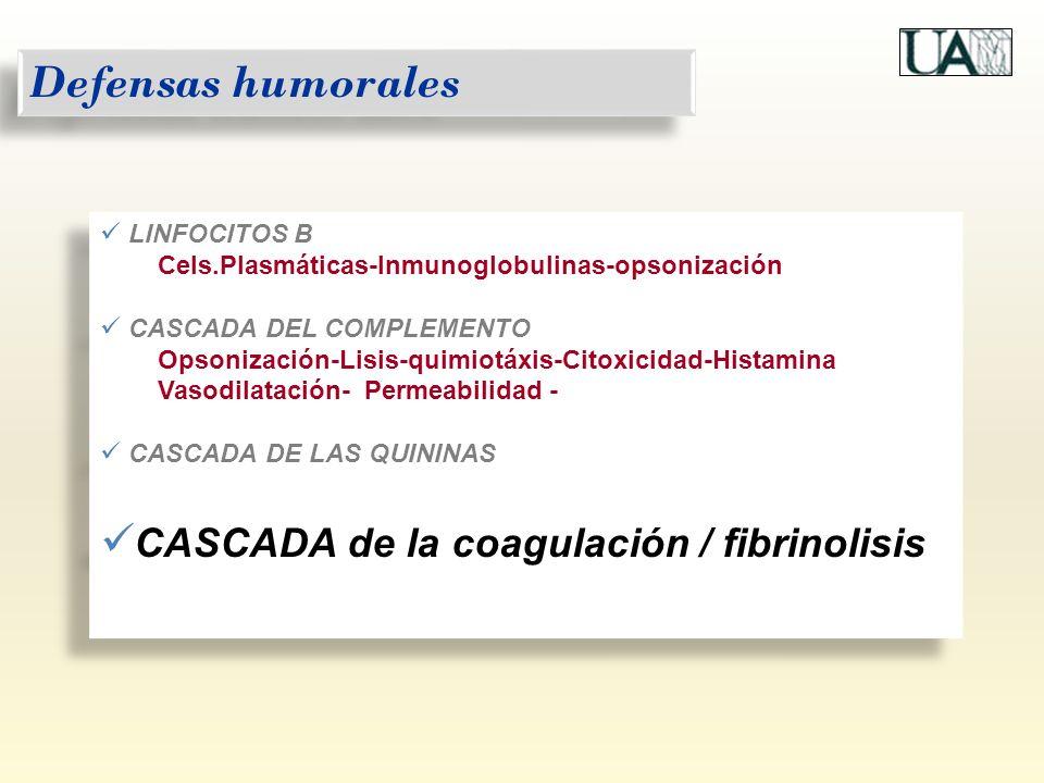 Defensas humorales CASCADA de la coagulación / fibrinolisis
