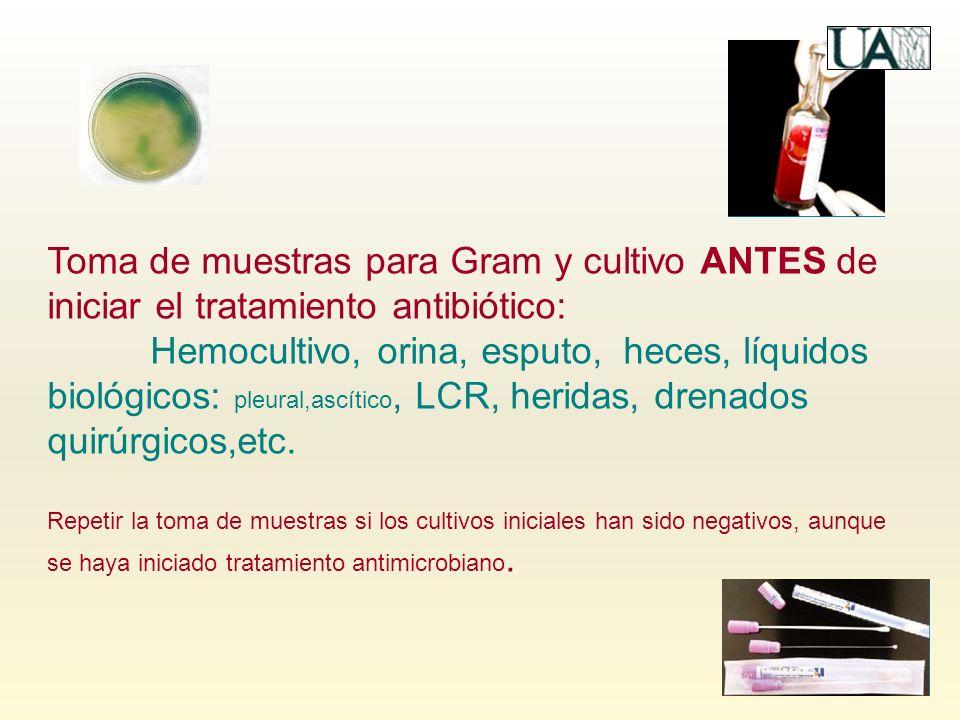 Toma de muestras para Gram y cultivo ANTES de iniciar el tratamiento antibiótico: