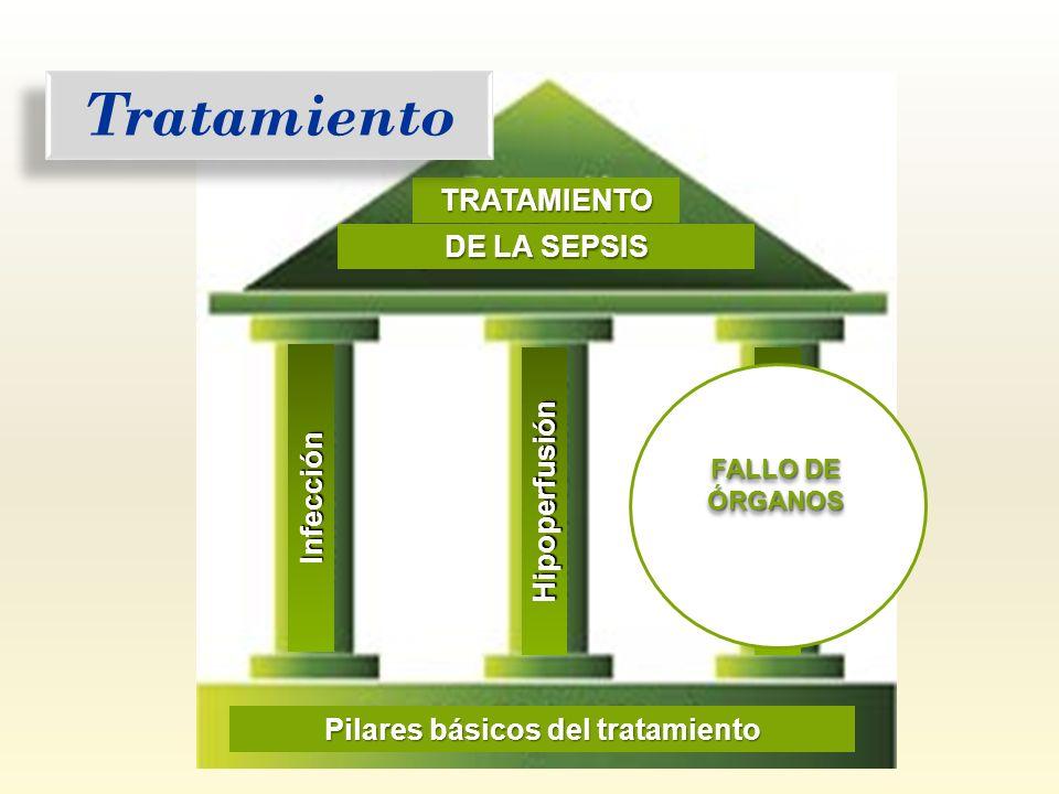 Pilares básicos del tratamiento
