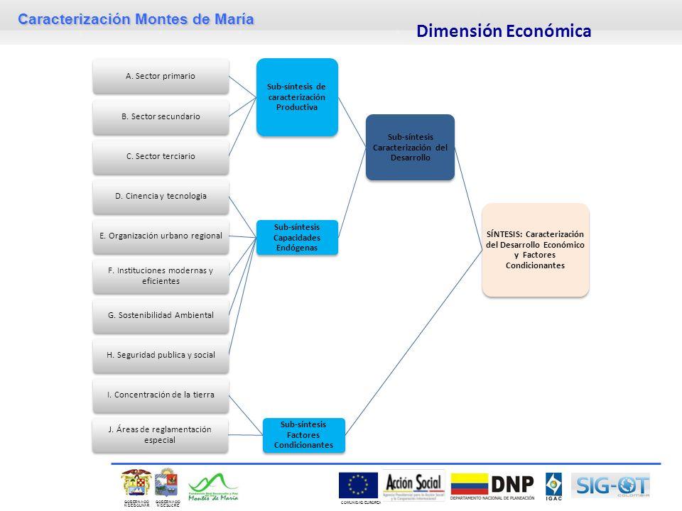 Dimensión Económica SÍNTESIS: Caracterización del Desarrollo Económico y Factores Condicionantes. Sub-síntesis Caracterización del Desarrollo.