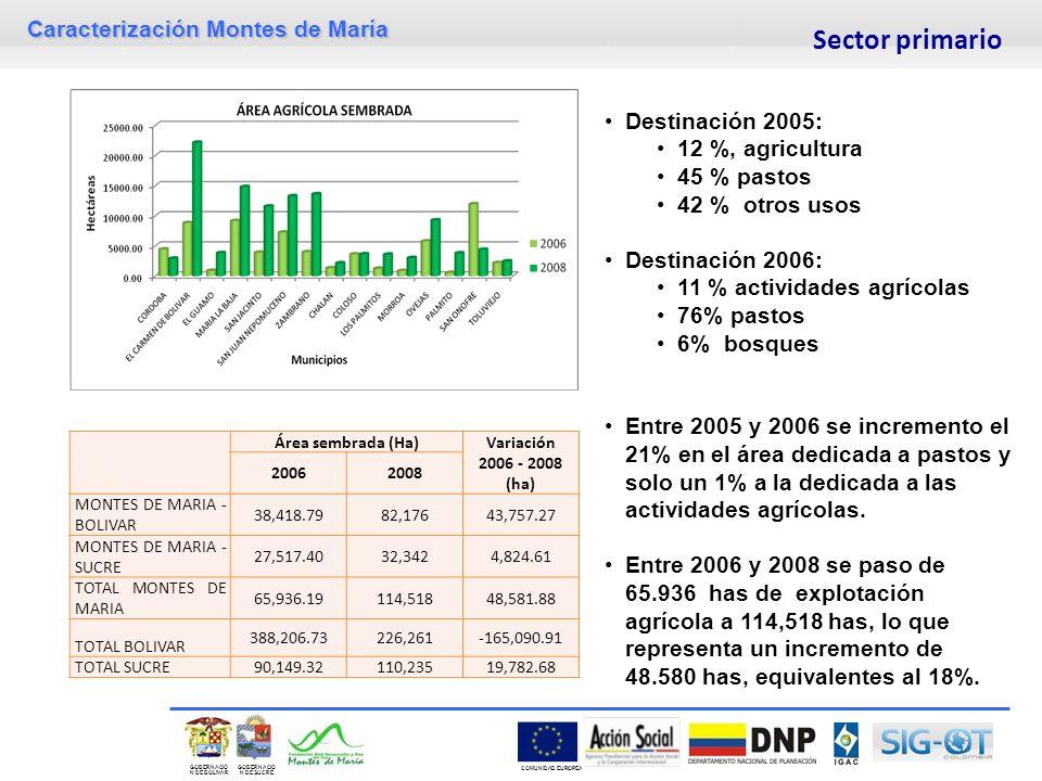 Sector primario Destinación 2005: 12 %, agricultura 45 % pastos