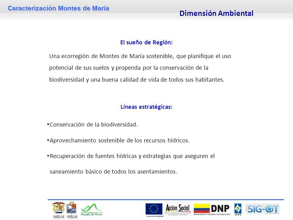 Dimensión Ambiental El sueño de Región: