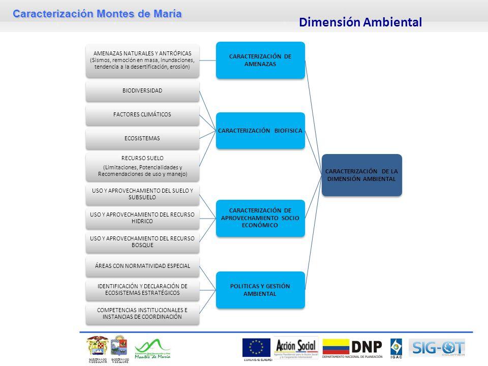 Dimensión Ambiental CARACTERIZACIÓN DE LA DIMENSIÓN AMBIENTAL
