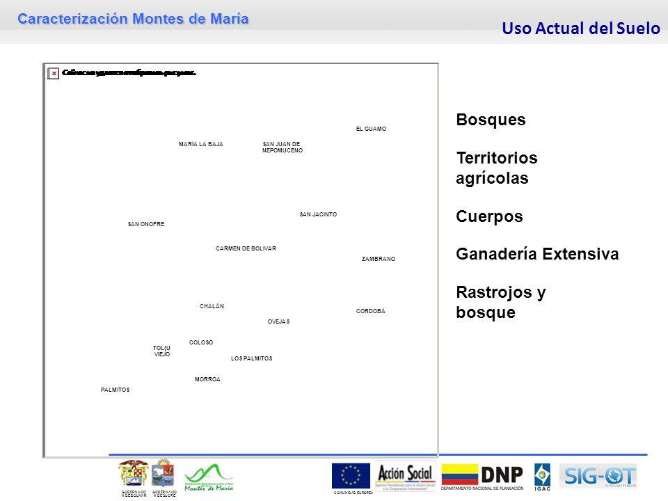 Uso Actual del Suelo Bosques Territorios agrícolas Cuerpos