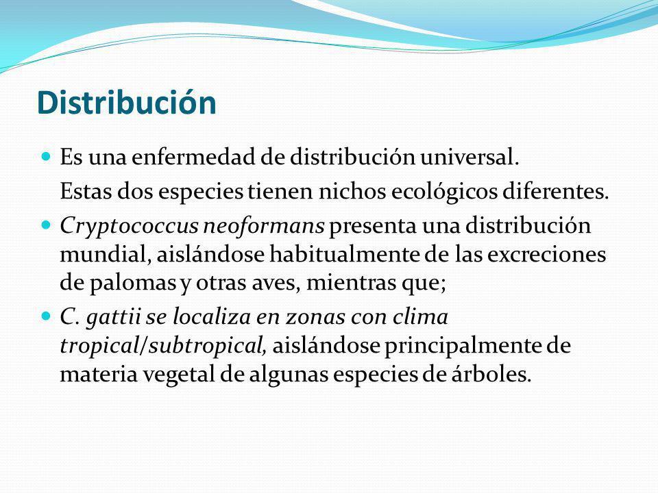 Distribución Es una enfermedad de distribución universal.