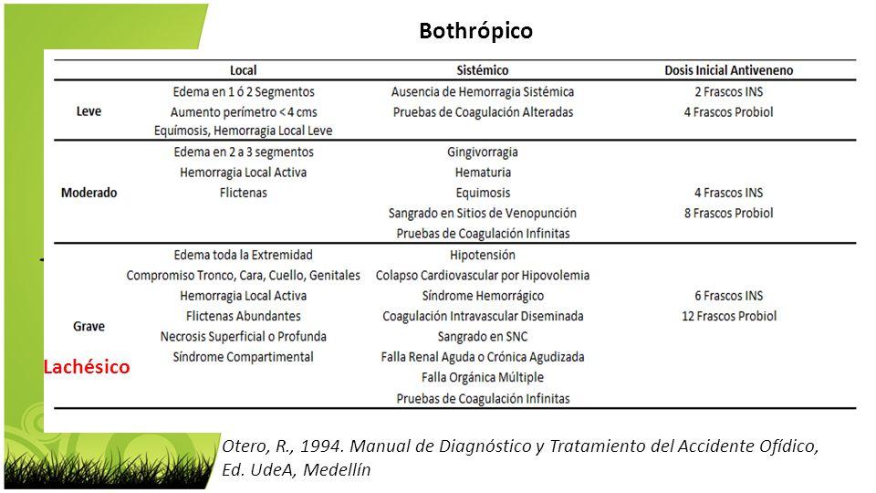 Bothrópico Lachésico. Porthidium nasutum. Otero, R., 1994. Manual de Diagnóstico y Tratamiento del Accidente Ofídico,