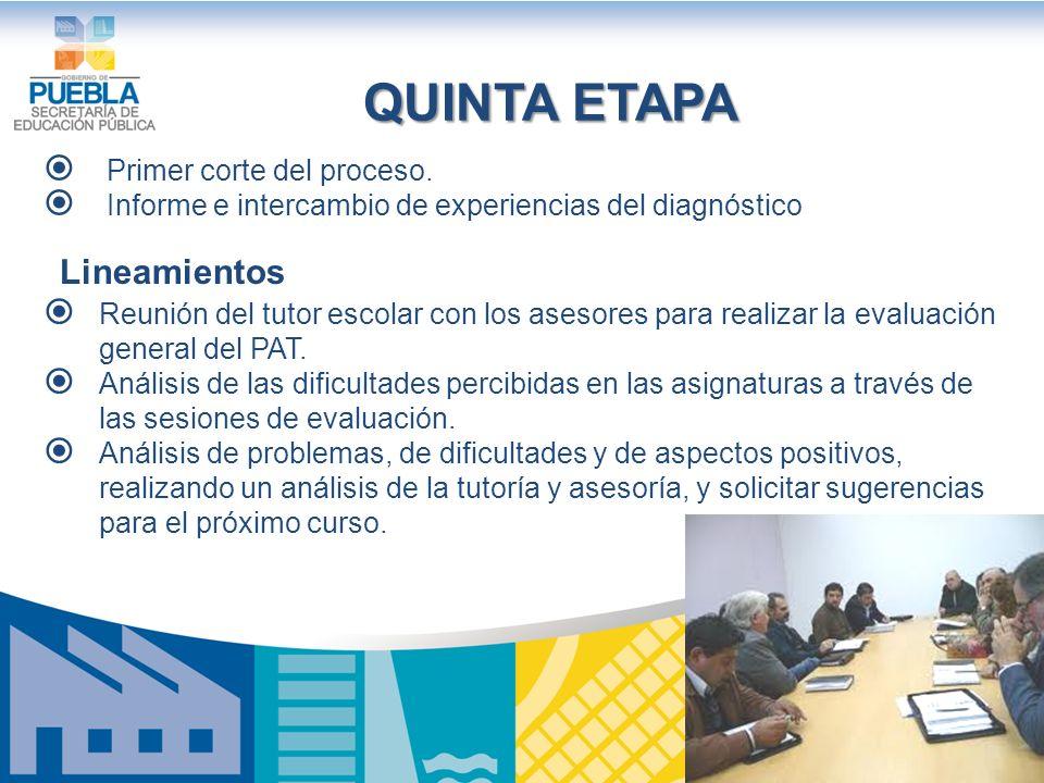 QUINTA ETAPA Lineamientos Primer corte del proceso.