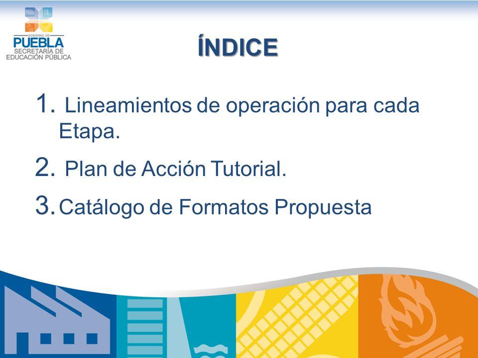 ÍNDICE Lineamientos de operación para cada Etapa.