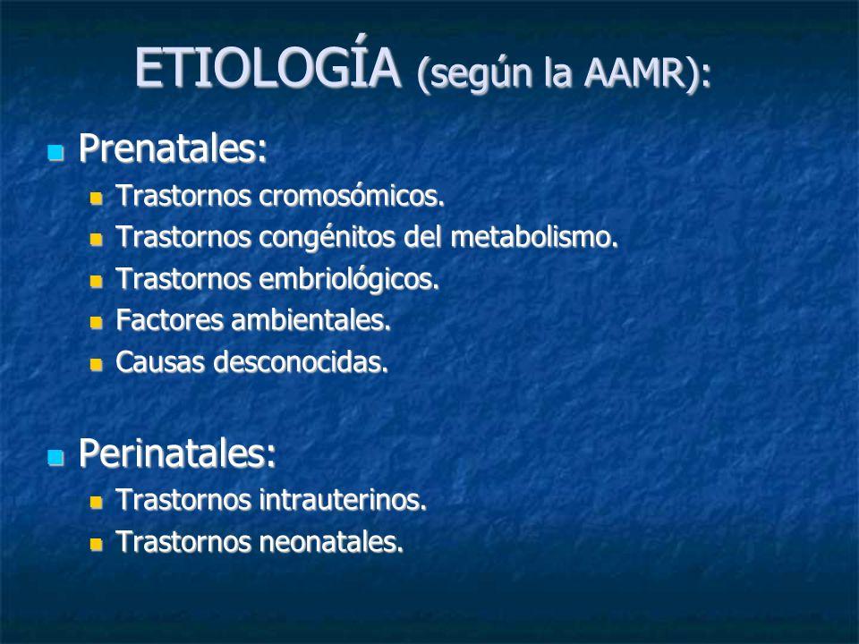ETIOLOGÍA (según la AAMR):