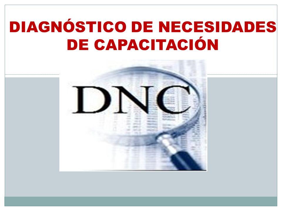 DIAGNÓSTICO DE NECESIDADES DE CAPACITACIÓN