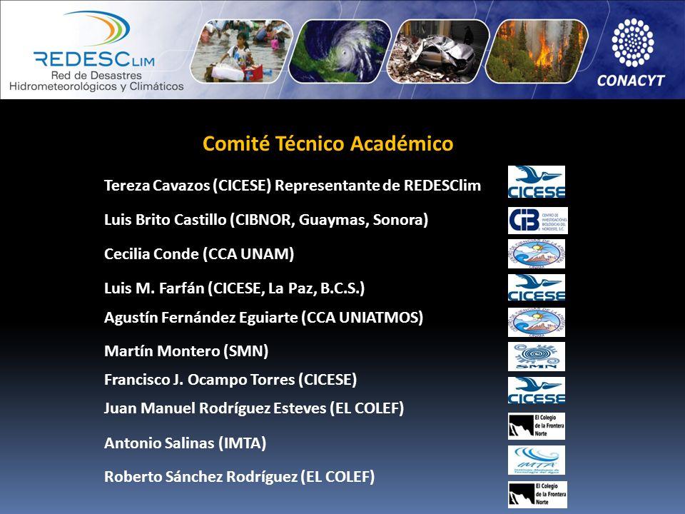 Comité Técnico Académico