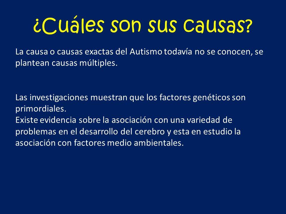 ¿Cuáles son sus causas La causa o causas exactas del Autismo todavía no se conocen, se plantean causas múltiples.