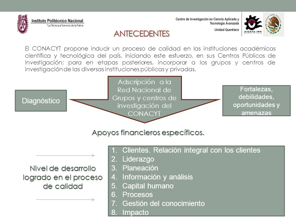 ANTECEDENTES Diagnóstico Clientes. Relación integral con los clientes