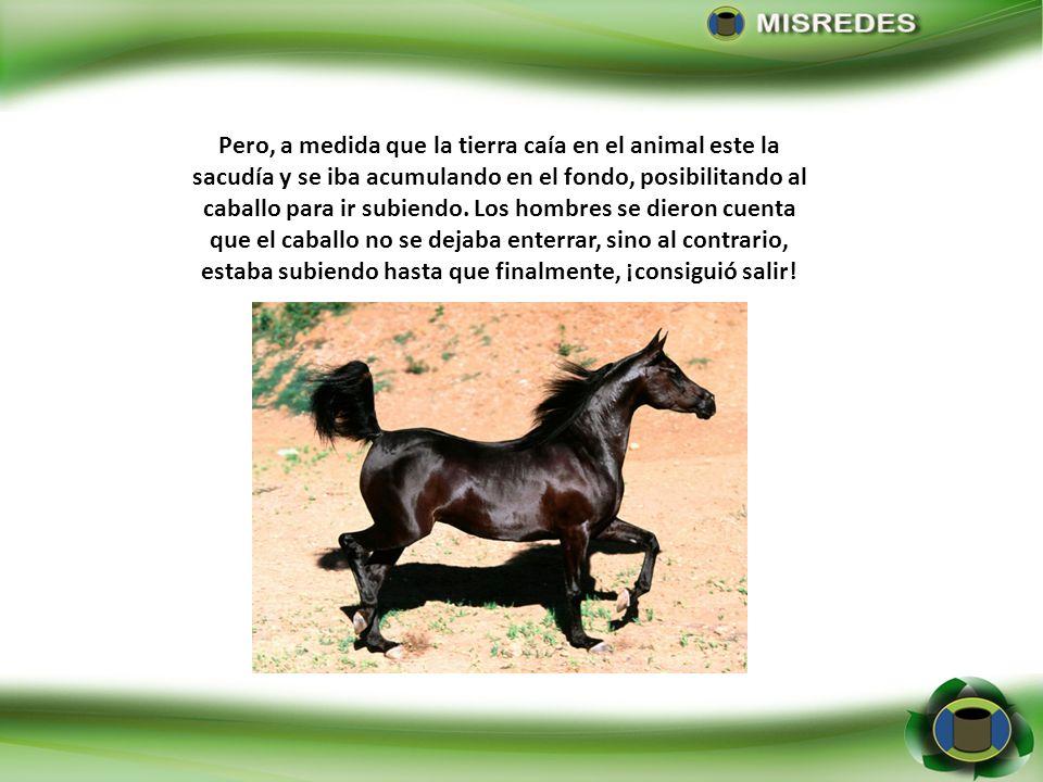 Pero, a medida que la tierra caía en el animal este la sacudía y se iba acumulando en el fondo, posibilitando al caballo para ir subiendo.