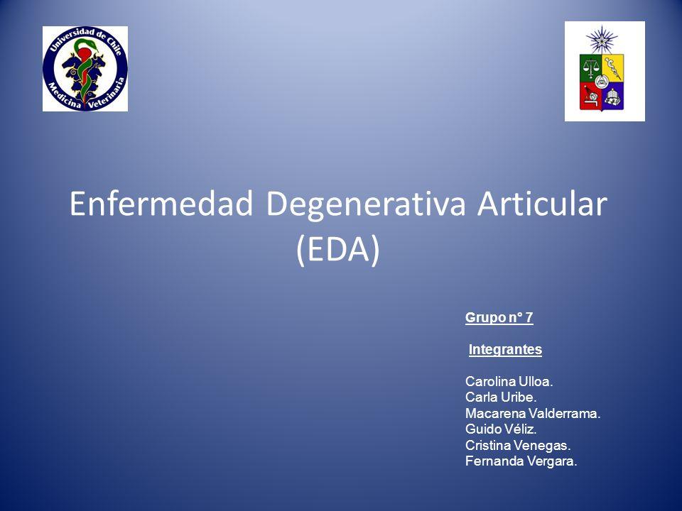 Enfermedad Degenerativa Articular (EDA)