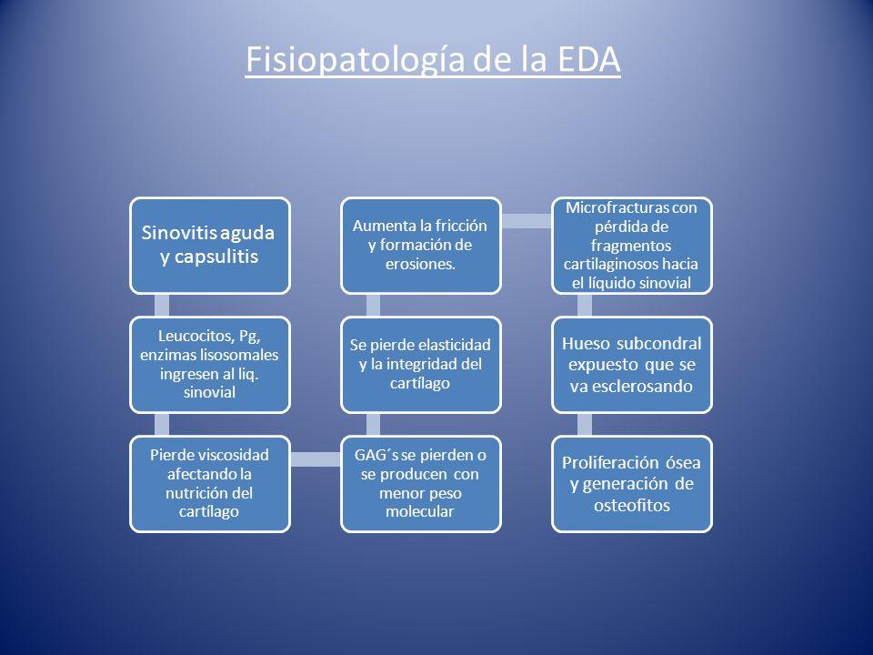 Fisiopatología de la EDA