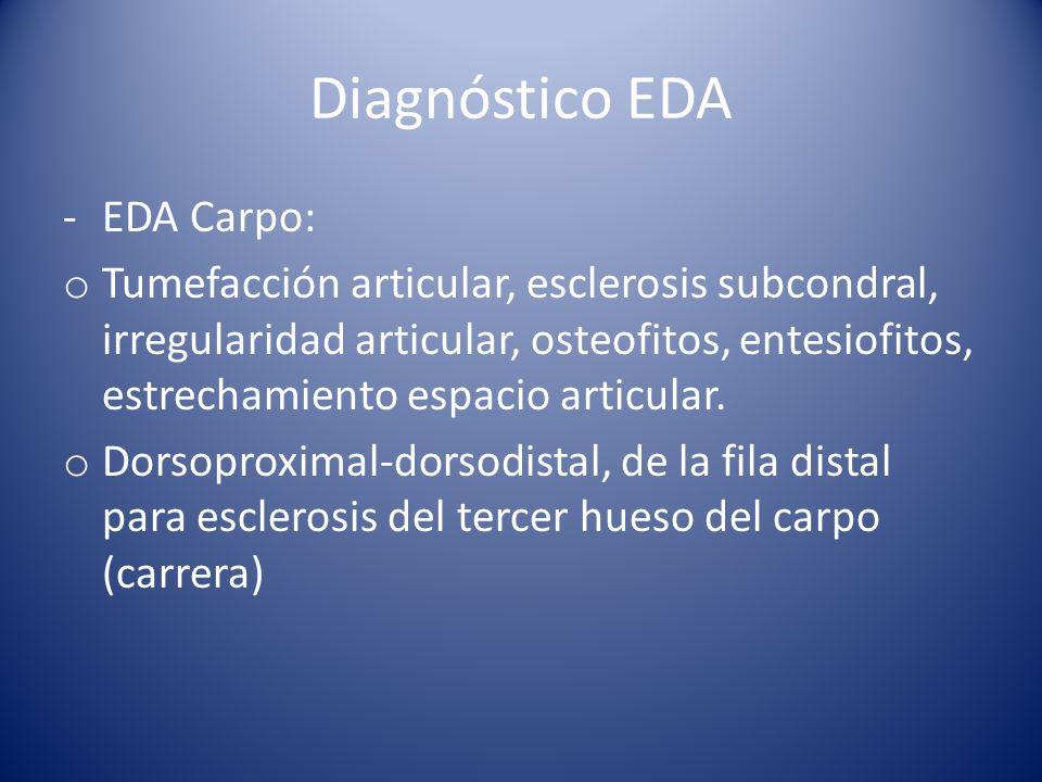 Diagnóstico EDA EDA Carpo: