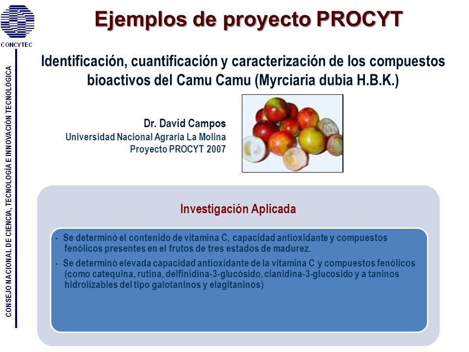 Ejemplos de proyecto PROCYT