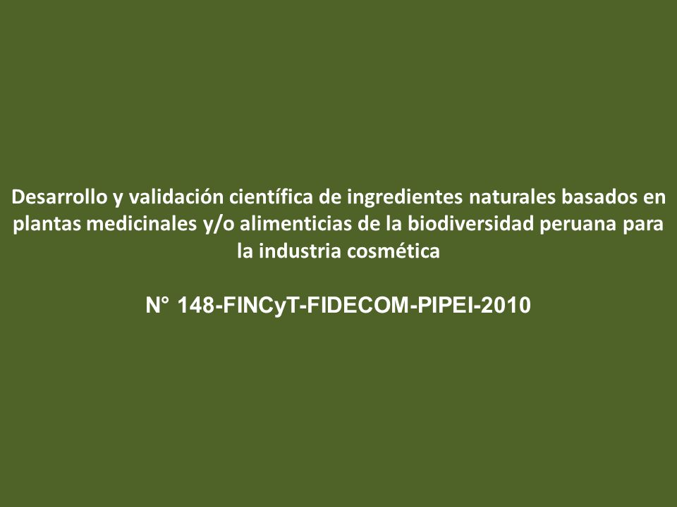 N° 148-FINCyT-FIDECOM-PIPEI-2010