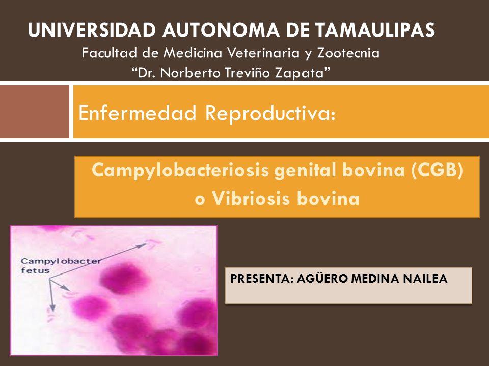 Enfermedad Reproductiva: