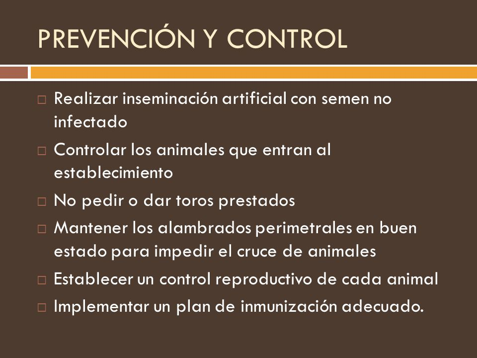 PREVENCIÓN Y CONTROL Realizar inseminación artificial con semen no infectado. Controlar los animales que entran al establecimiento.