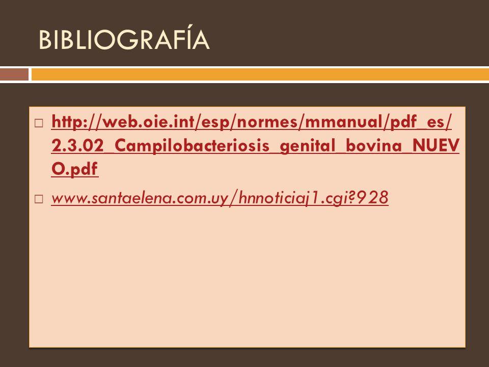 BIBLIOGRAFÍA http://web.oie.int/esp/normes/mmanual/pdf_es/ 2.3.02_Campilobacteriosis_genital_bovina_NUEV O.pdf.
