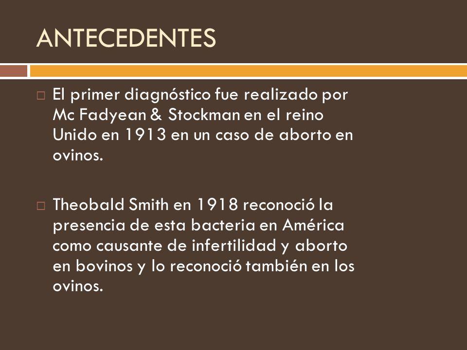 ANTECEDENTES El primer diagnóstico fue realizado por Mc Fadyean & Stockman en el reino Unido en 1913 en un caso de aborto en ovinos.