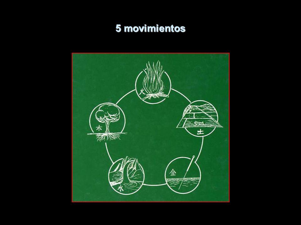 5 movimientos