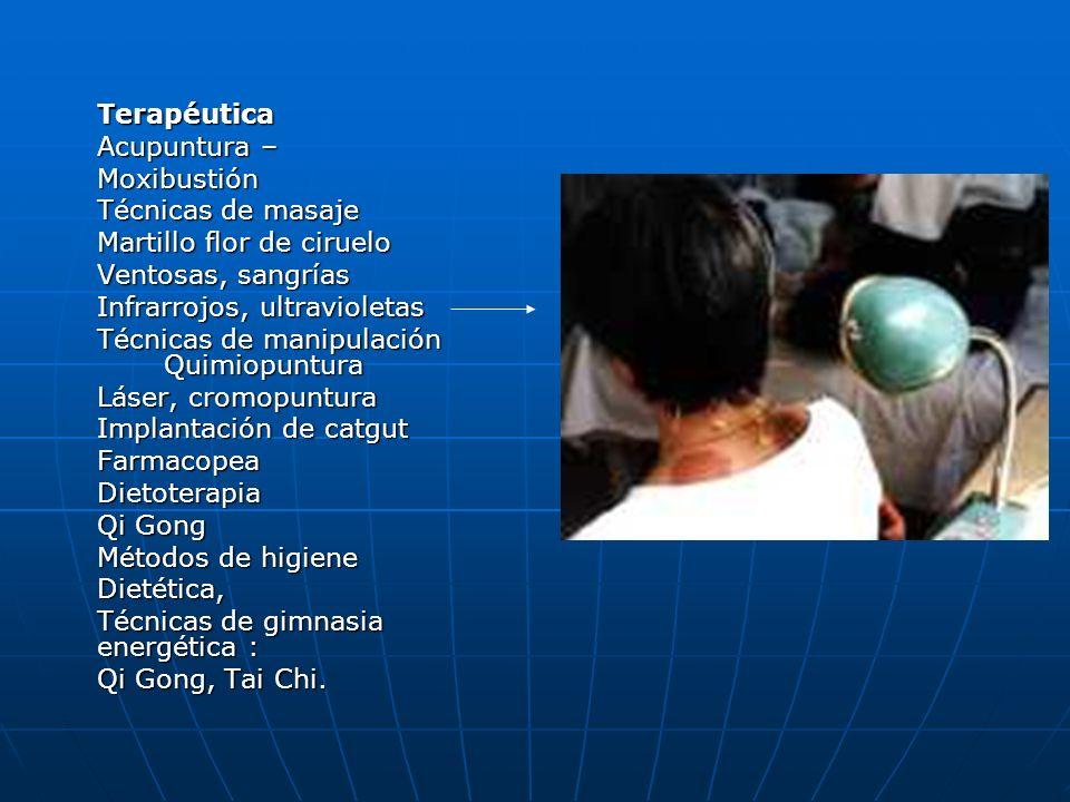 Terapéutica Acupuntura – Moxibustión. Técnicas de masaje. Martillo flor de ciruelo. Ventosas, sangrías.