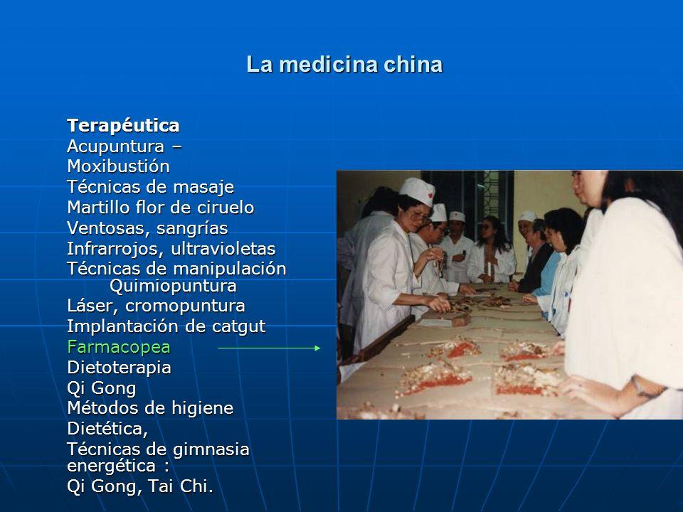 La medicina china Terapéutica Acupuntura – Moxibustión