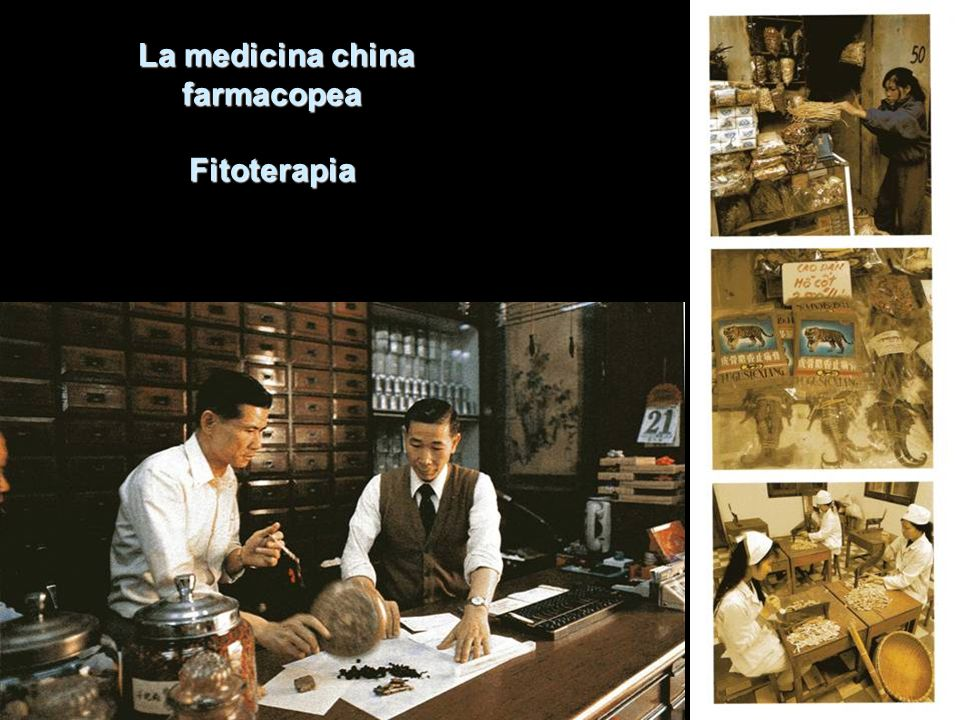 La medicina china farmacopea Fitoterapia