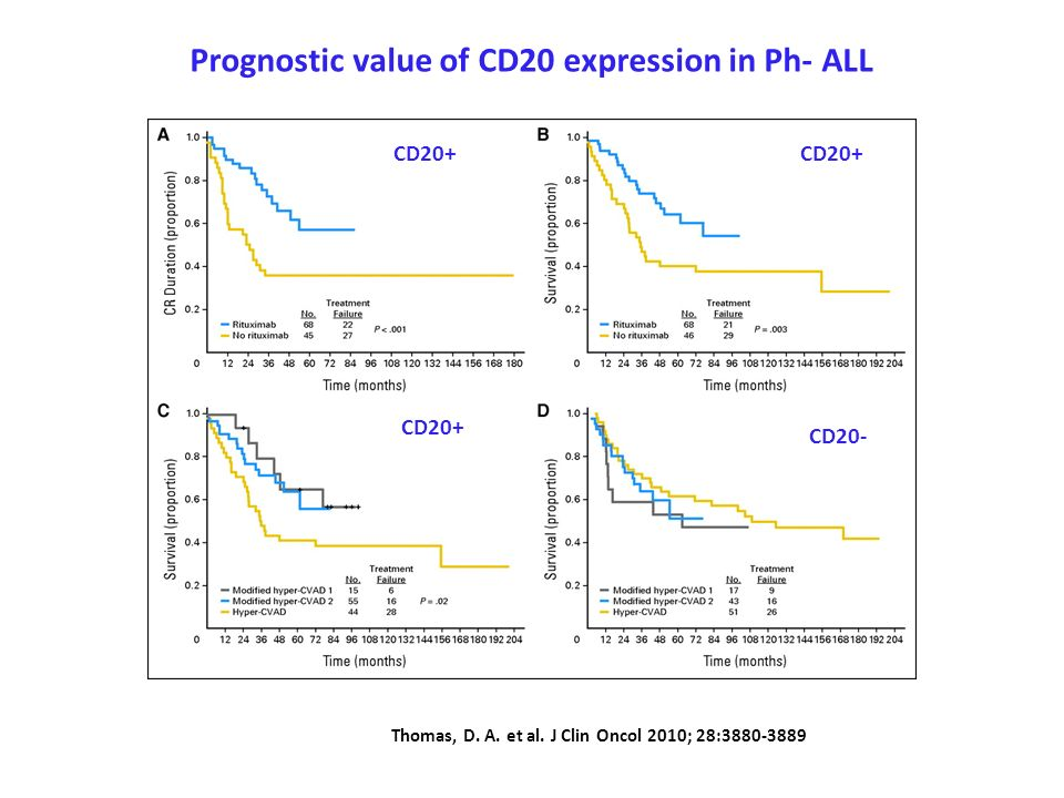 Prognostic value of CD20 expression in Ph- ALL