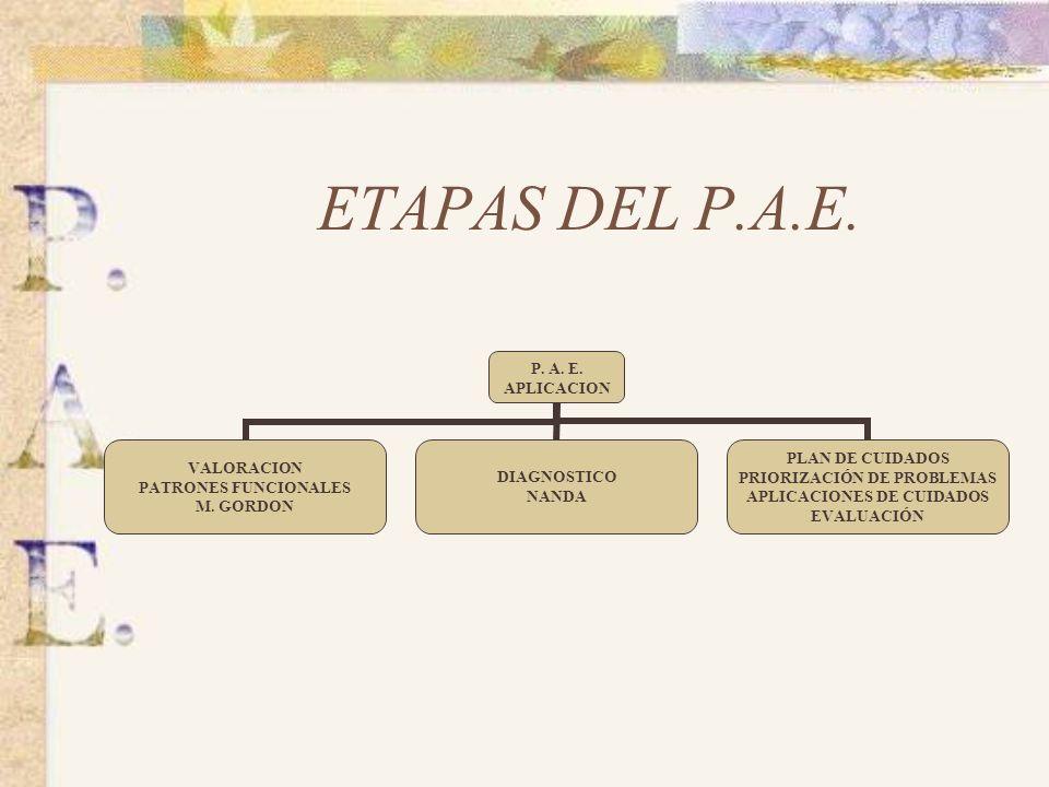ETAPAS DEL P.A.E.