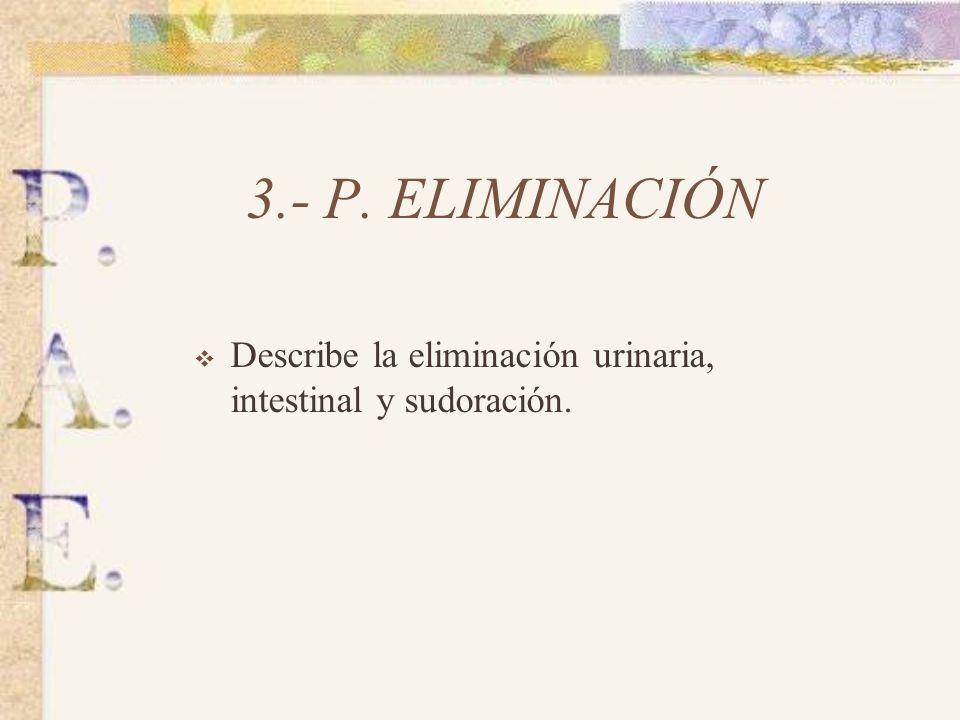 3.- P. ELIMINACIÓN Describe la eliminación urinaria, intestinal y sudoración.