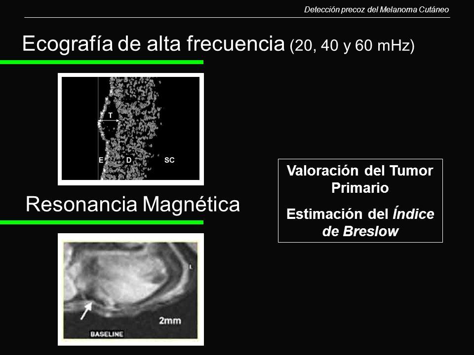 Valoración del Tumor Primario Estimación del Índice de Breslow