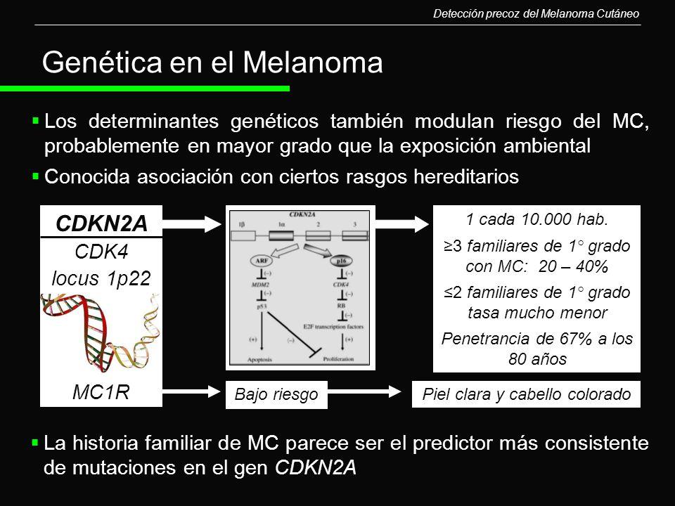 Genética en el Melanoma