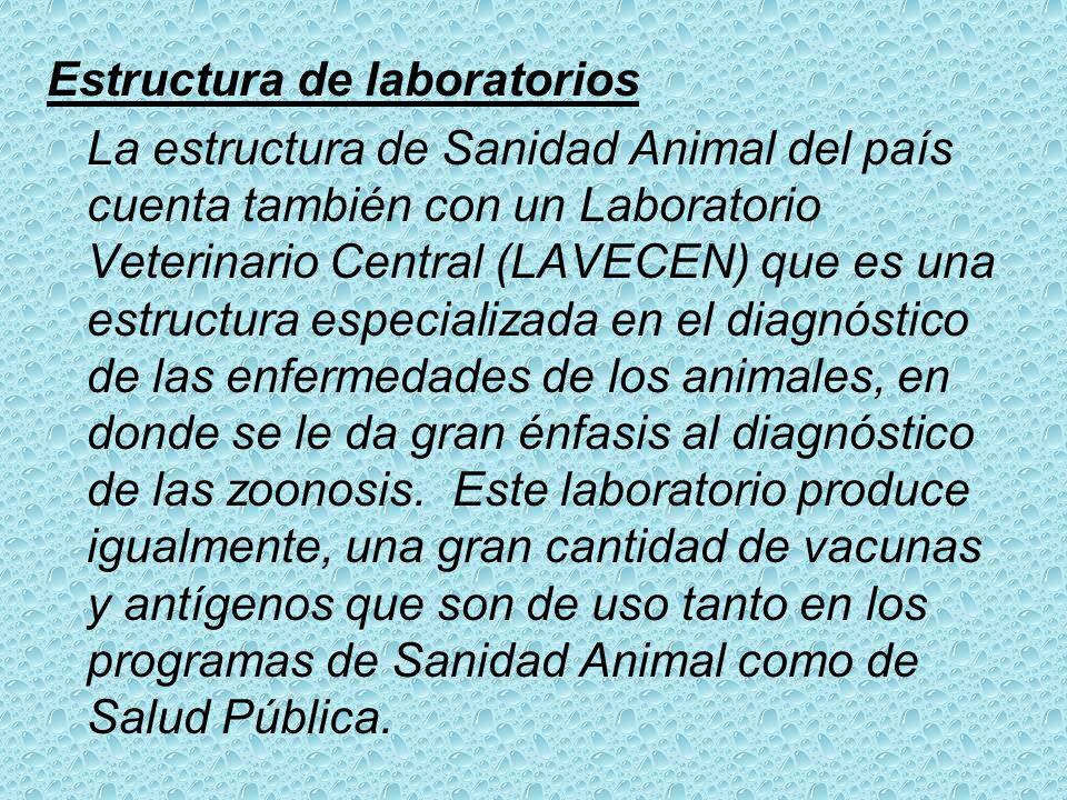 Estructura de laboratorios