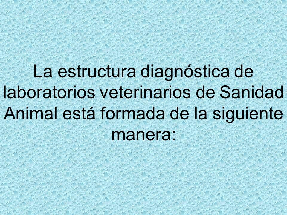 La estructura diagnóstica de laboratorios veterinarios de Sanidad Animal está formada de la siguiente manera: