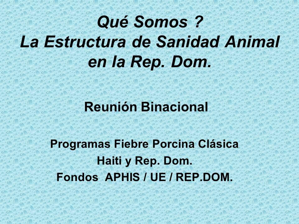 Qué Somos La Estructura de Sanidad Animal en la Rep. Dom.